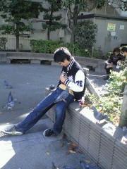 鳩とともに去りぬ
